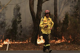 Oz bishops respond to fire crisis