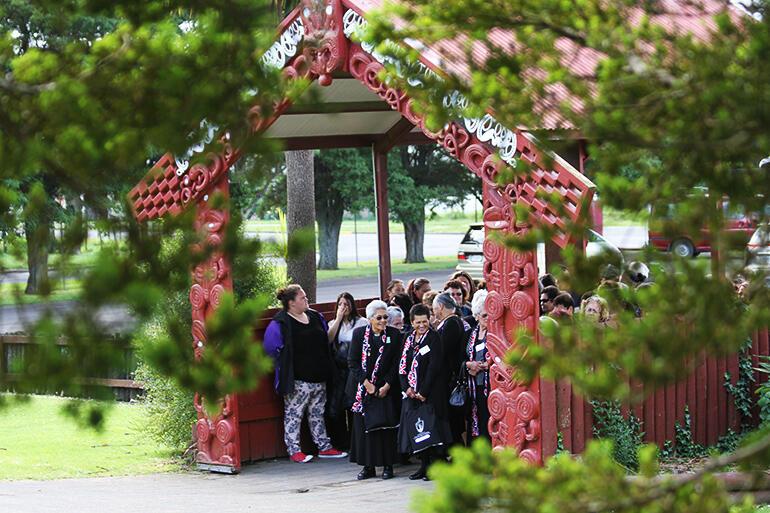 Taonga Gardens Nz Garden Ftempo