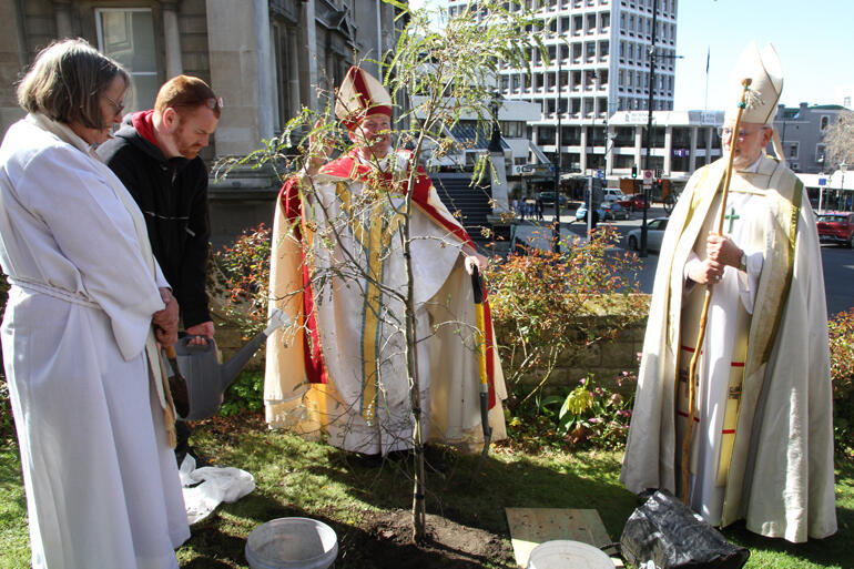 Bishop Steven blesses the 150th commemorative kowhai tree.
