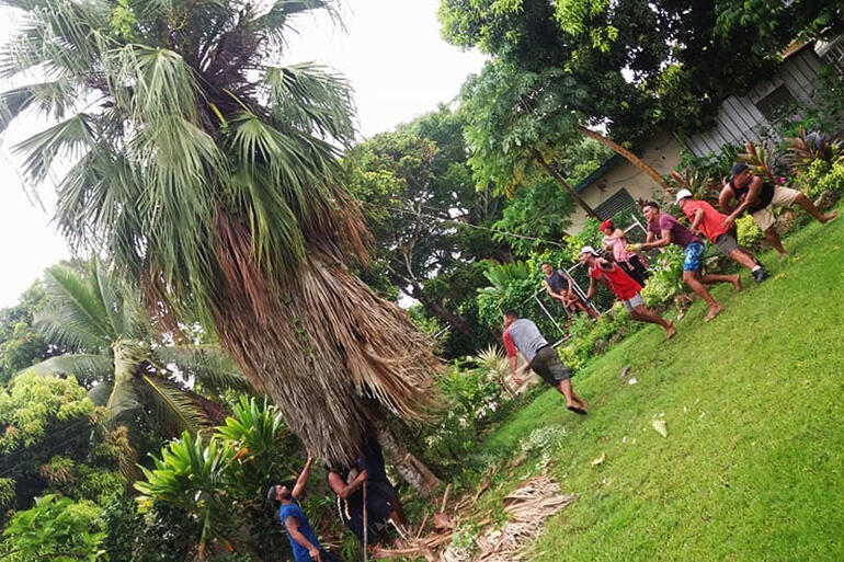 Young people from All Saints topple a tree which had been made dangerous by Gita.